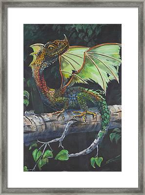 Adult Alaskan Birch Dragon Framed Print by Scott Thompson