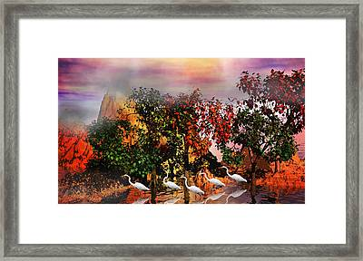Adventure Pros Framed Print by Betsy Knapp