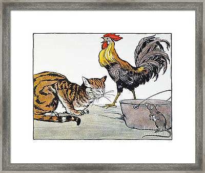 Aesop: Cat, Cock, And Mouse Framed Print by Granger