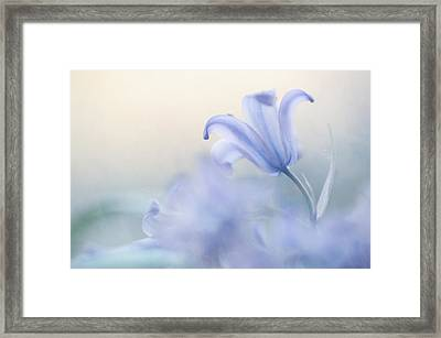 Aethereal Blue Framed Print by Jenny Rainbow