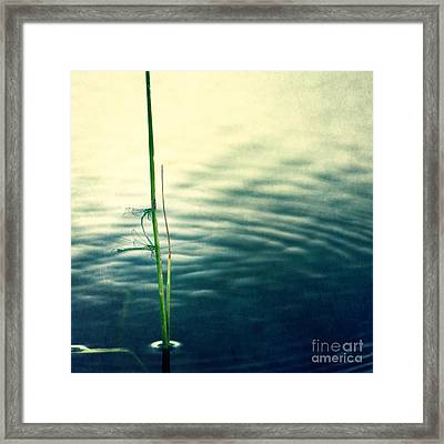 Affections Framed Print