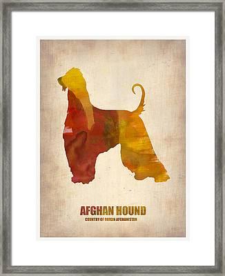 Afghan Hound Poster Framed Print