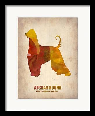 Afghan Hound Watercolor Framed Prints