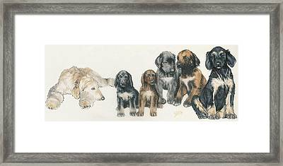 Afghan Hound Puppies Framed Print by Barbara Keith
