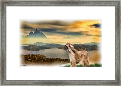 Framed Print featuring the painting Afghan Hound by Tyler Robbins