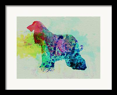 Afghan Hound Puppy Mixed Media Framed Prints