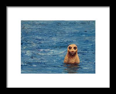Seal Framed Prints