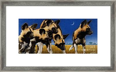 Africa By The Pack... Framed Print by Will Bullas