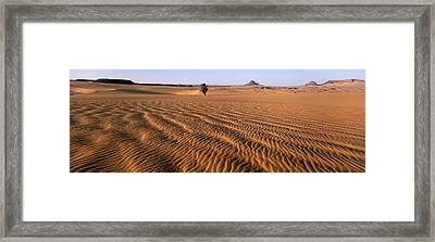 Africa, Chad, Ounianga Serir, Teguedei Framed Print by Tips Images