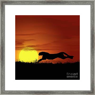 Africa Cheetah Sunset Framed Print