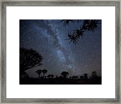 Africa, Namibia Milky Way And Quiver Framed Print