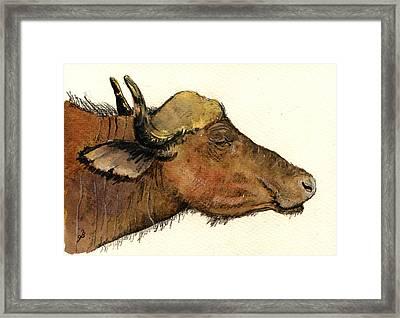 African Buffalo Head Framed Print
