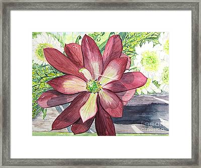 Framed Print featuring the painting African Flower by Carol Flagg