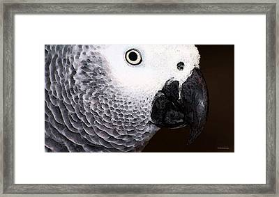 African Gray Parrot Art - Seeing Is Believing Framed Print by Sharon Cummings