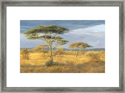 African Landscape Framed Print by Lucie Bilodeau