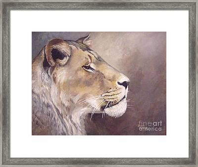African Lioness On Alert Framed Print by Suzanne Schaefer
