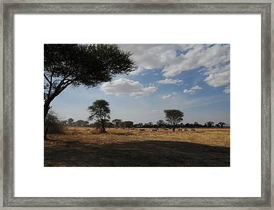 African Series Clouds Framed Print by Katherine Green