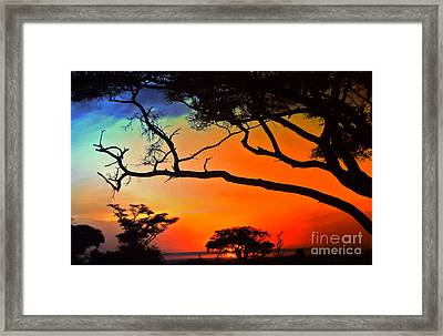African Skies Framed Print by Lydia Holly