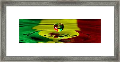 African Splash Framed Print by Brendan Quinn