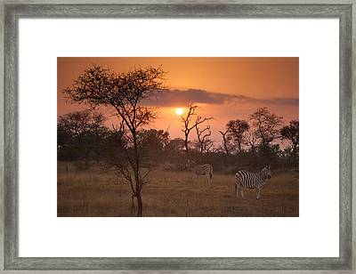 African Sunrise Framed Print by Craig Brown