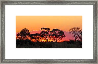 African Sunrise Framed Print by Karen E Phillips