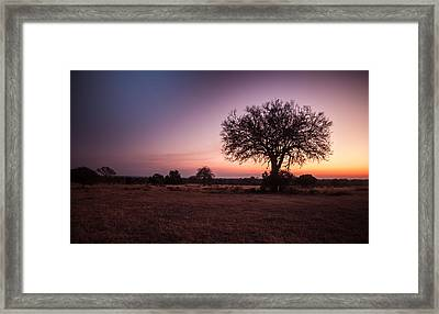 African Sunset Framed Print by Craig Brown