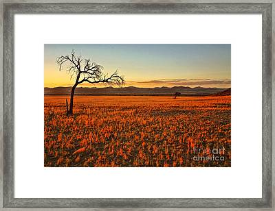 African Sunset Framed Print by Kate McKenna