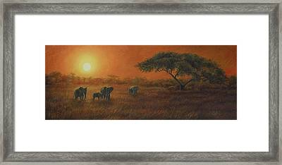 African Sunset Framed Print by Lucie Bilodeau