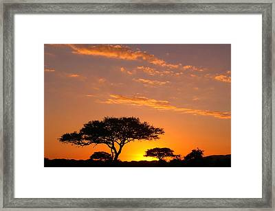 African Sunset Framed Print by Sebastian Musial