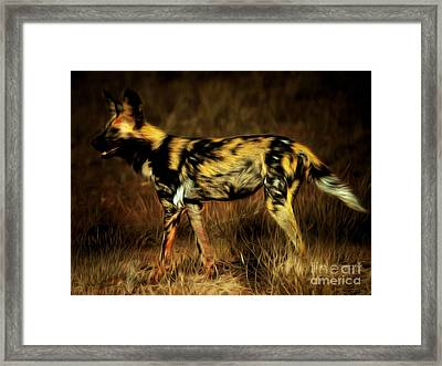 African Wild Dog 20150211brun Framed Print by Wingsdomain Art and Photography