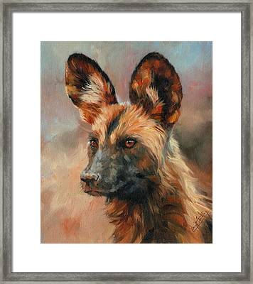 African Wild Dog Framed Print