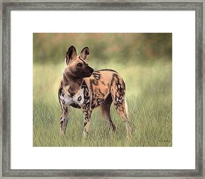 African Wild Dog Painting Framed Print
