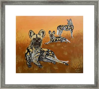 African Wild Dogs At Dusk Framed Print by Lorna Loxton