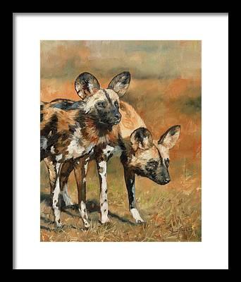 Oil Paints Paintings Framed Prints