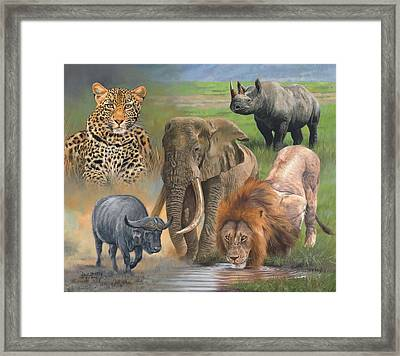 Africa's Big Five Framed Print by David Stribbling