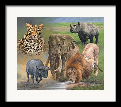 Rhinocerus Framed Prints