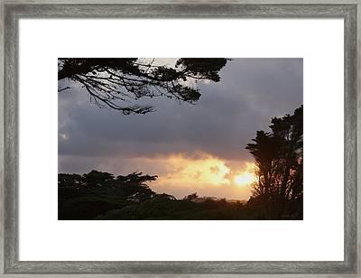 Afrique Framed Print by Amanda Holmes Tzafrir