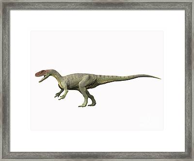 Afrovenator Abakensis, Middle Jurassic Framed Print by Nobumichi Tamura