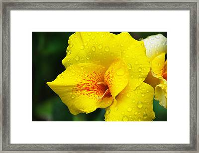 After A Summer Shower Framed Print