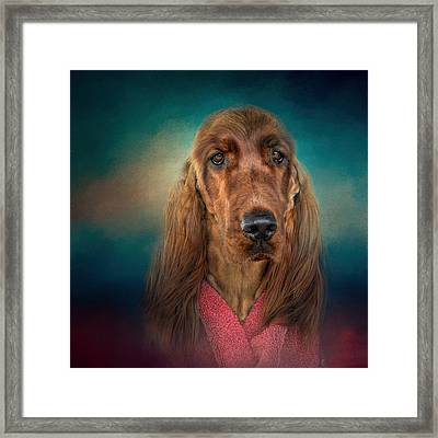 After A Swim - Irish Setter - Dog Art Framed Print by Jai Johnson