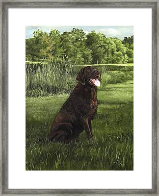 After A Swim Framed Print by Terri  Meyer