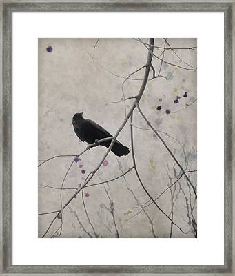 After All Framed Print by Gothicrow Images