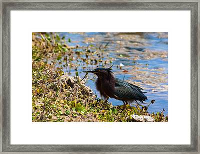 After Fishing Framed Print by Ed Gleichman