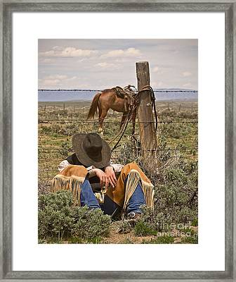 After Lunch Framed Print by Nikole Morgan