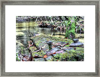 After Man Is Gone Framed Print by JC Findley