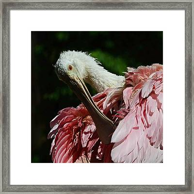 After The Bath Framed Print