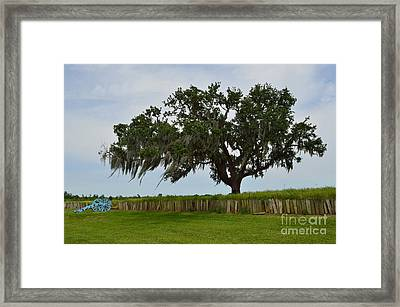 After The Battle Framed Print by Alys Caviness-Gober