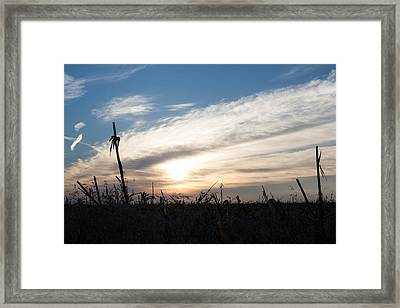 After The Harvest  Framed Print by Dawn Romine