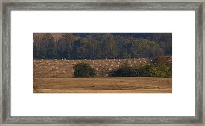 After The Harvest Framed Print by Doug Hubbard