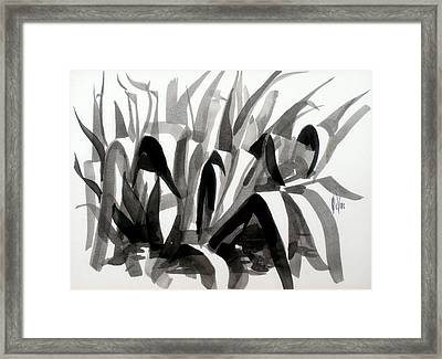 After The Iris Blooms Have Fallen Framed Print